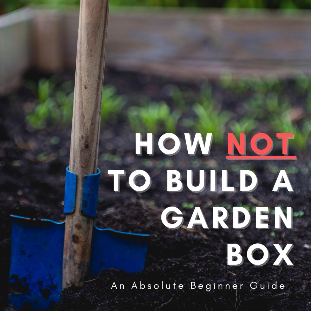 how-not-to-build-a-garden-box-an-absolute-beginner-guide