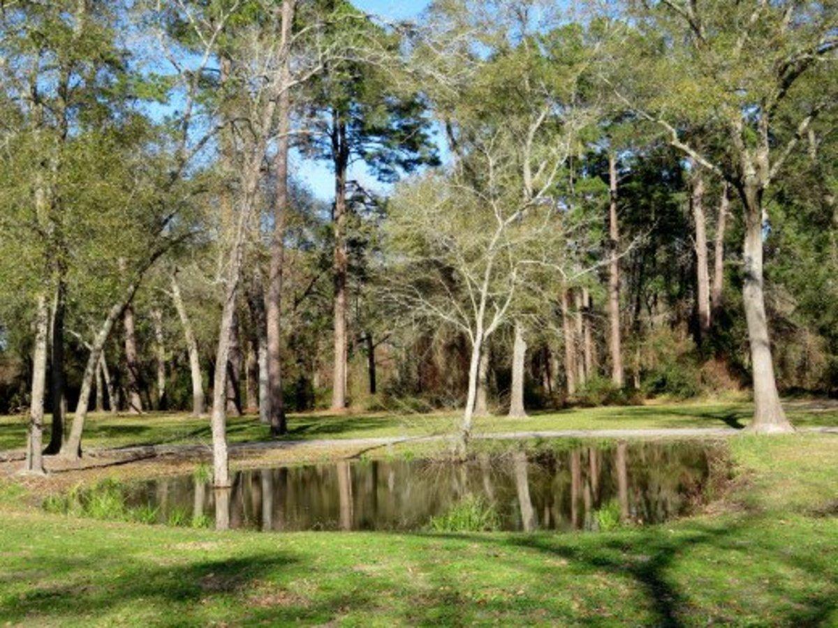 Maxwell Park in Cypress, Texas