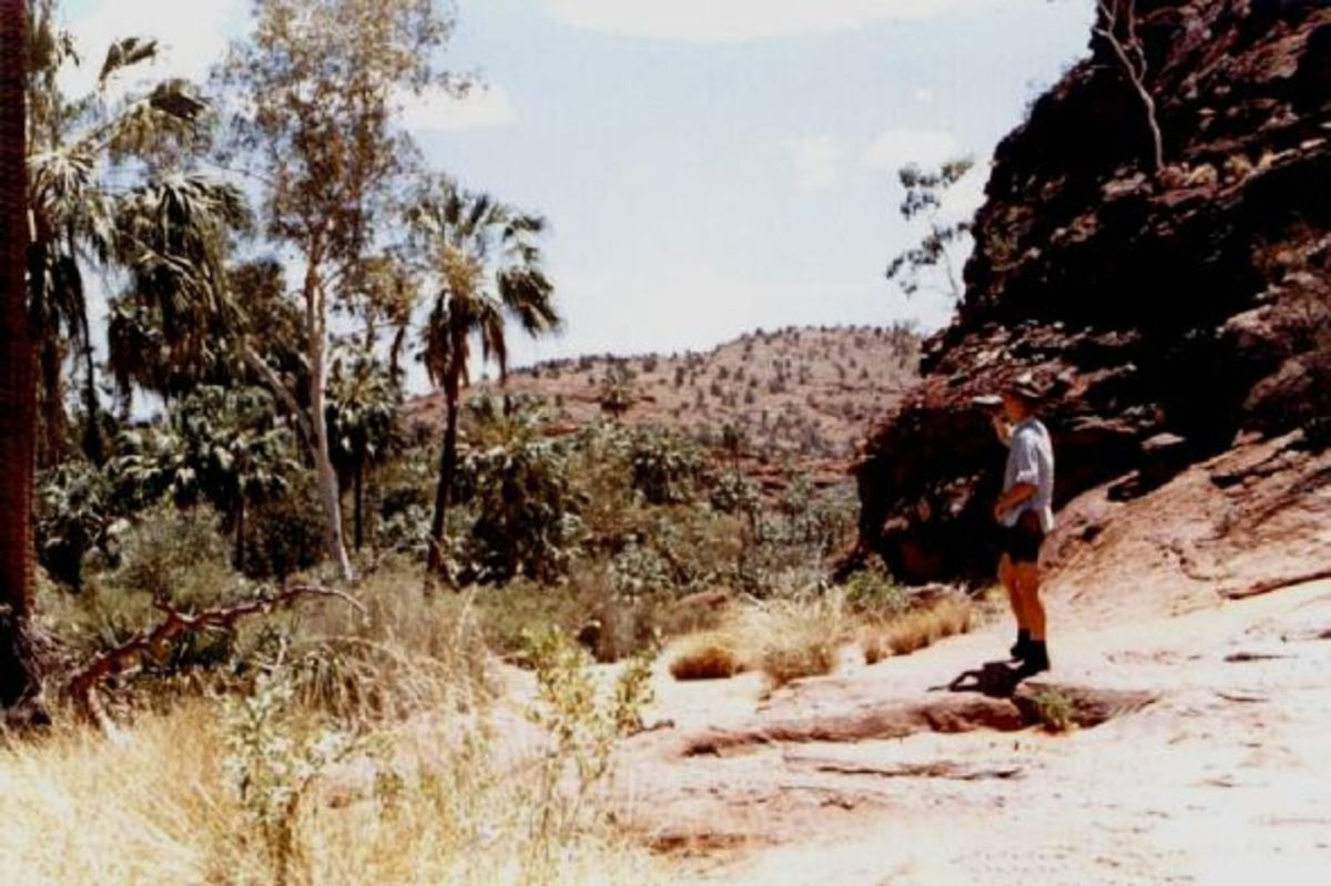 This Is Me At Palm Valley Central Australia