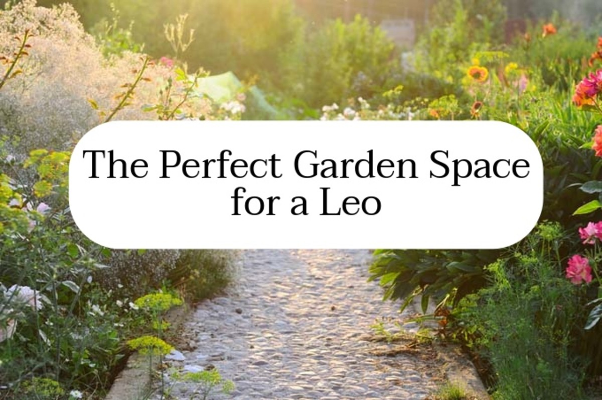 A Leo garden space should be inviting, energetic, and colorful. Leo wants a space that's exciting and rejuvenating. There should be a variety of plants and space to sprawl out and relax.