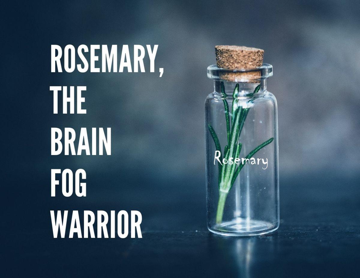 Fight brain fog today!