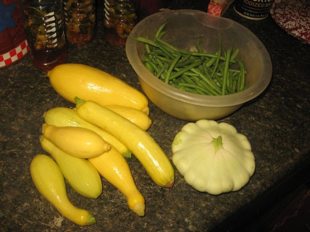 Yellow squash, green beans, and pattypan squash.