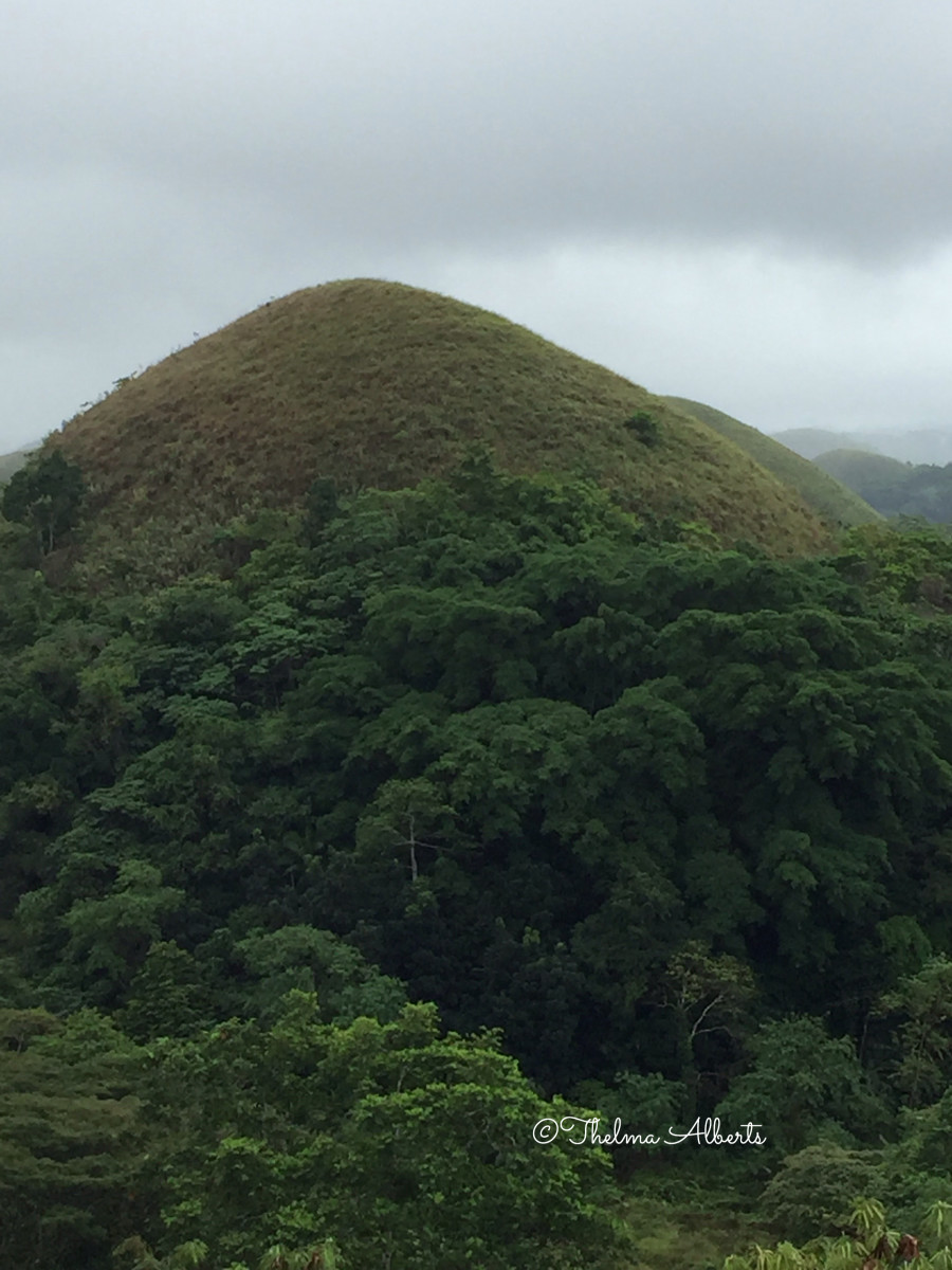 One of the Chocolate Hills in Bohol.