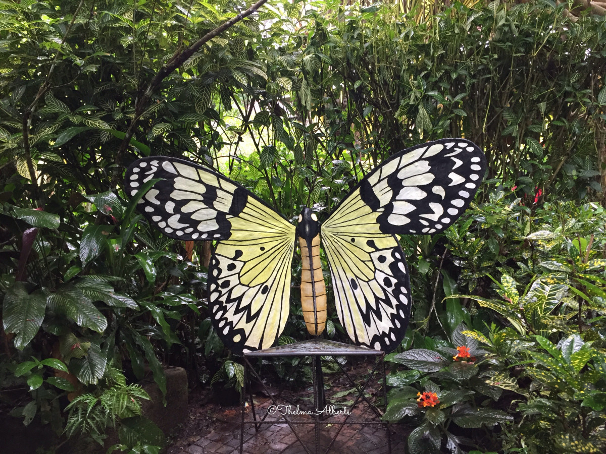 Butterfly bench at tha Conservation Center.