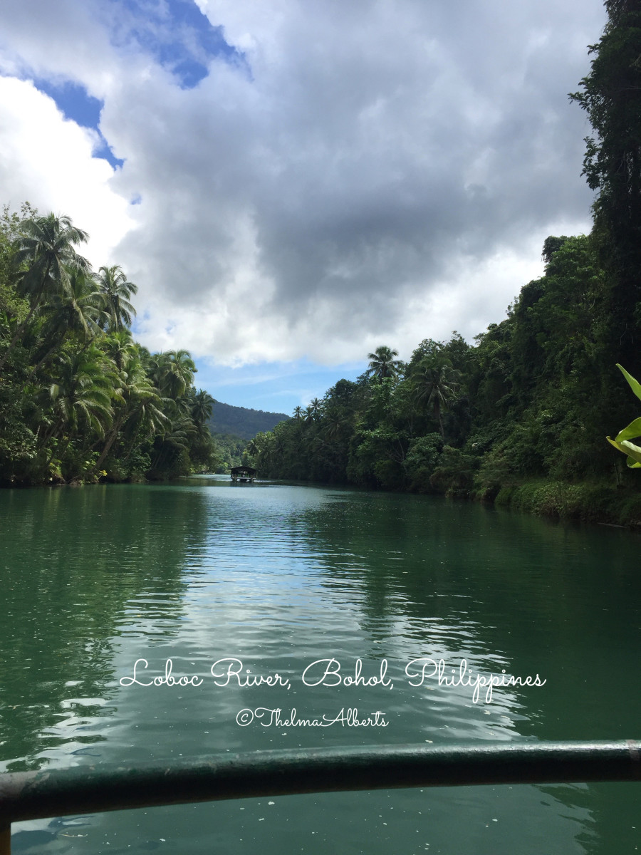 The view of Loboc River from inside the Cruise.