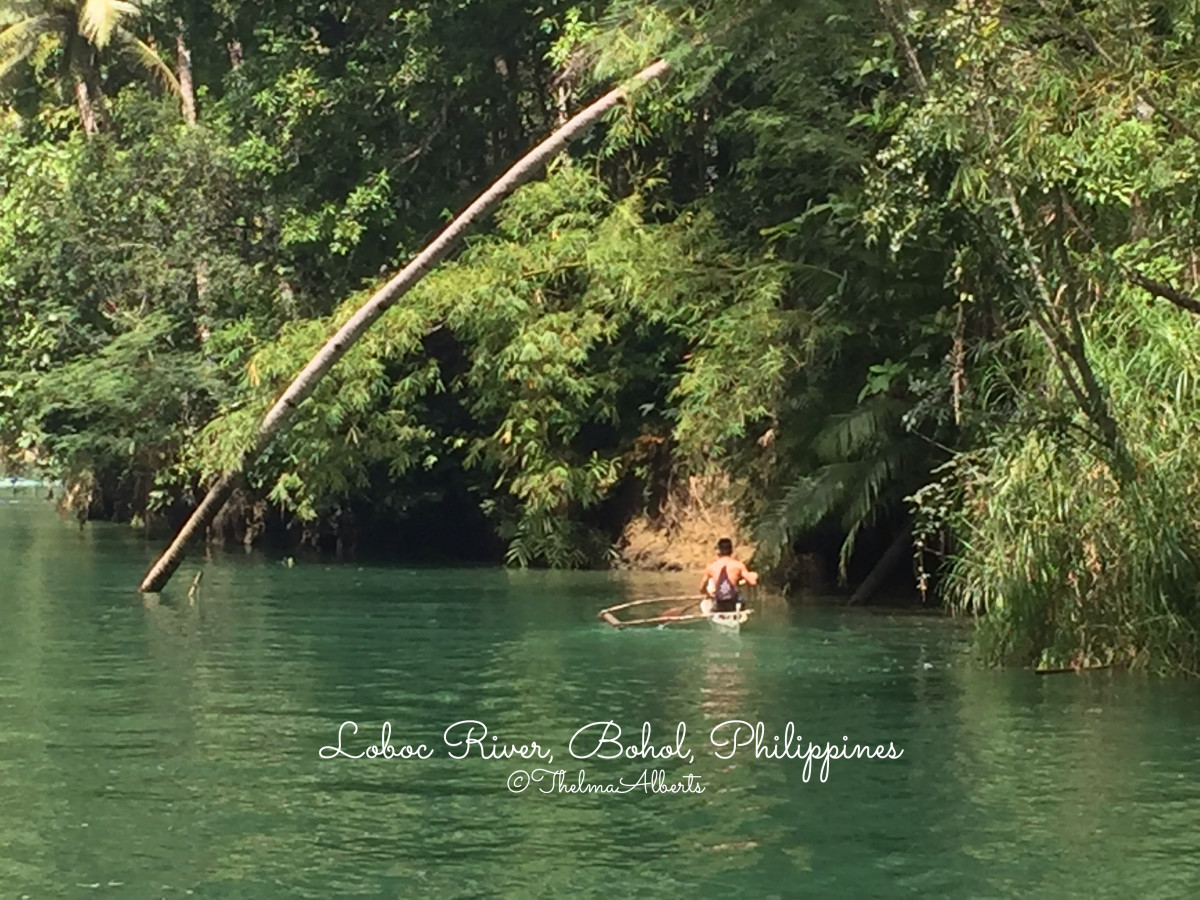 One of the view while cruising the Loboc River.