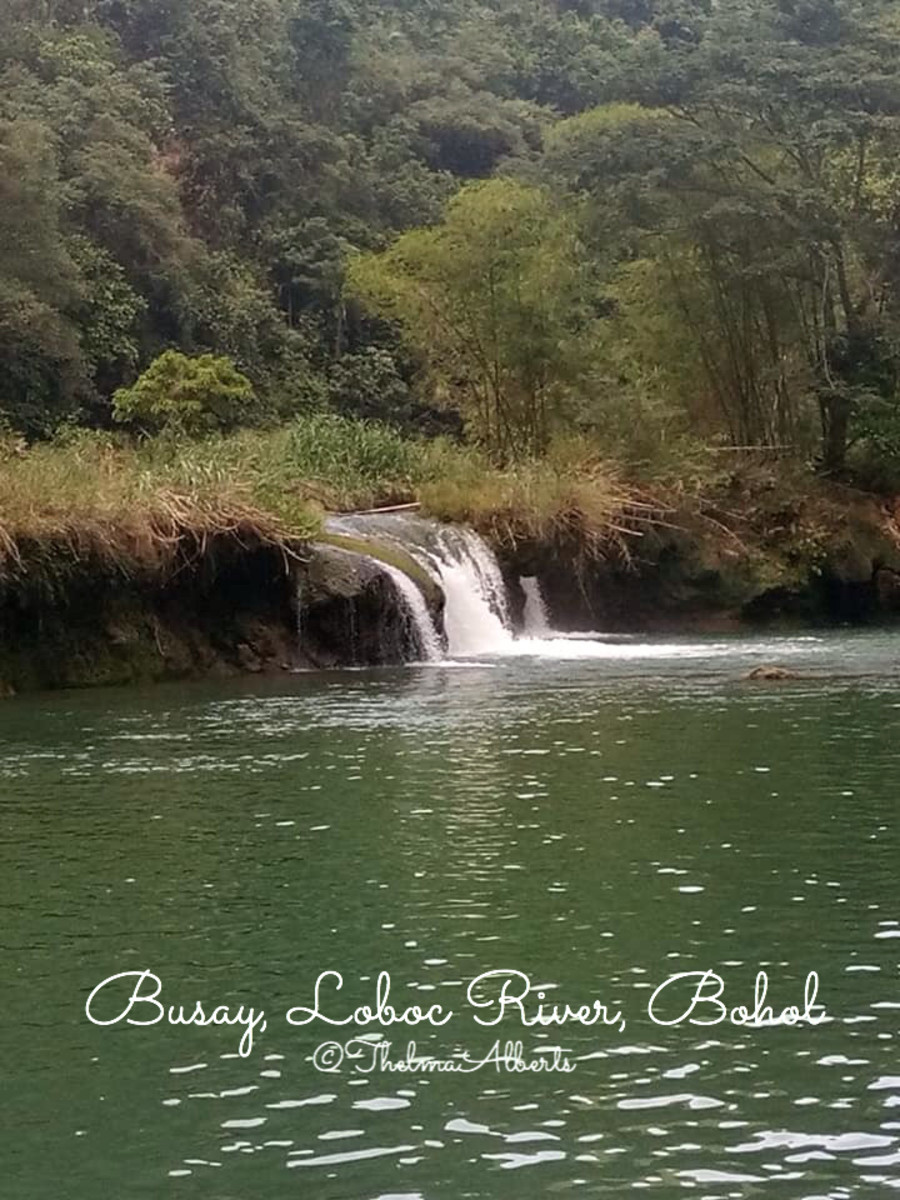 Busay is a small waterfalls in Loboc River where the Cruise ends and return back to the platform where the Cruise starts.
