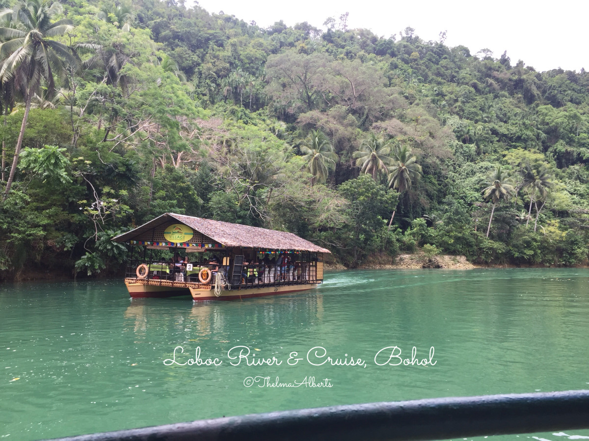 The awesome beauty of Loboc River in Bohol.