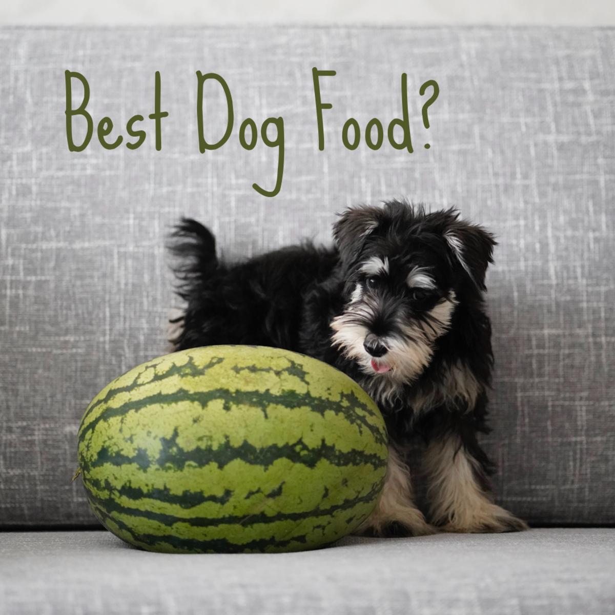10-best-dog-food-2