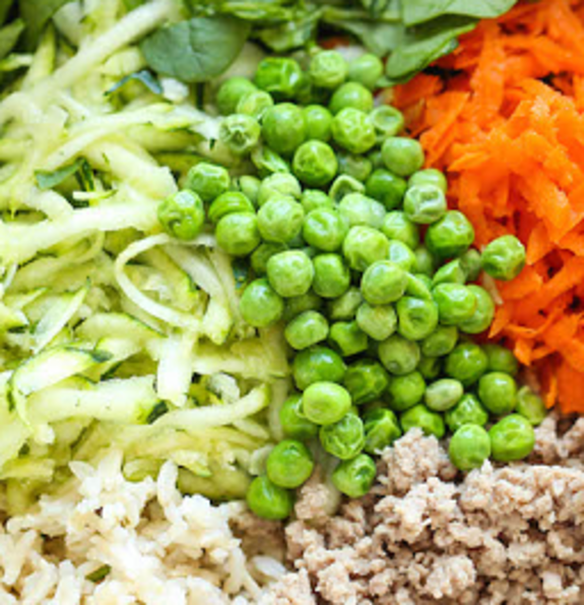 dog-food-recipes-turkey-vegetable-rice-meal