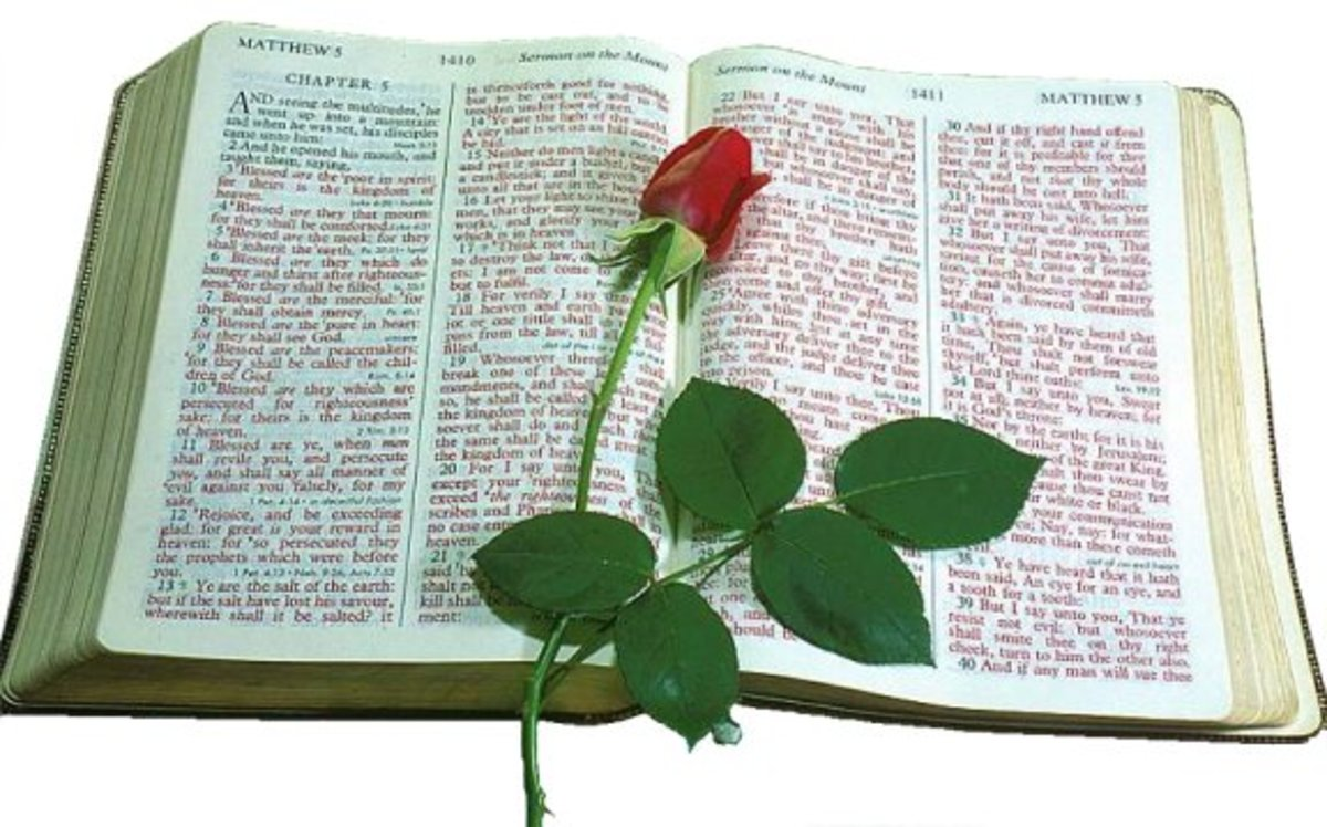Mom loved roses and her Bible