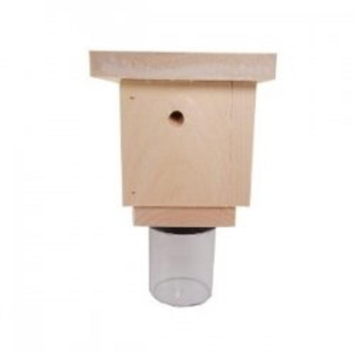 carpenter-bee-traps