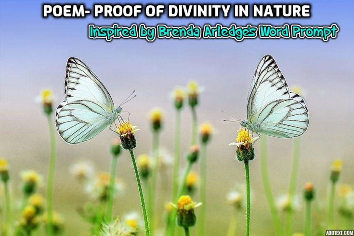 divinity in nature