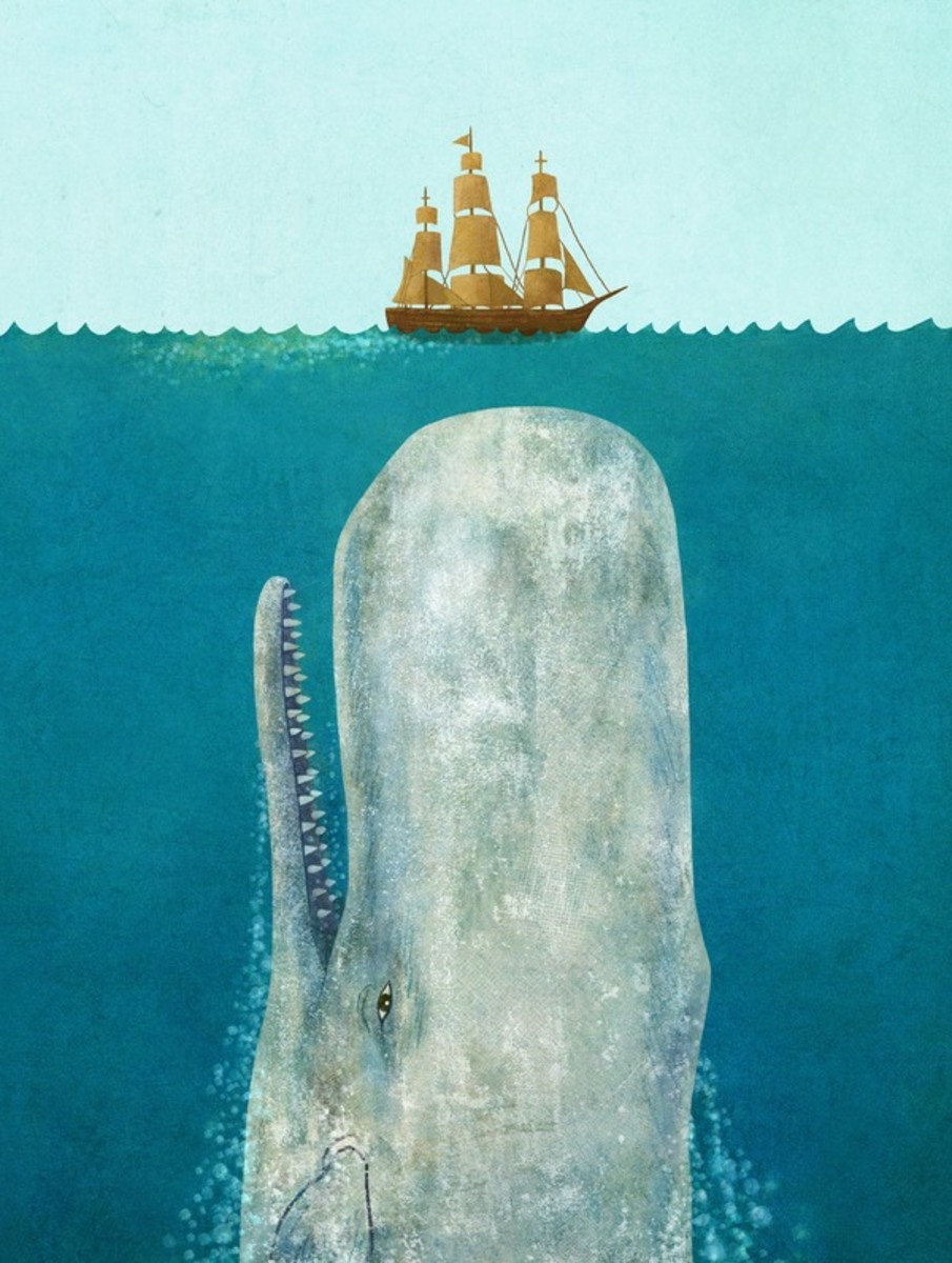 """The Whale"" by Terry Fan"
