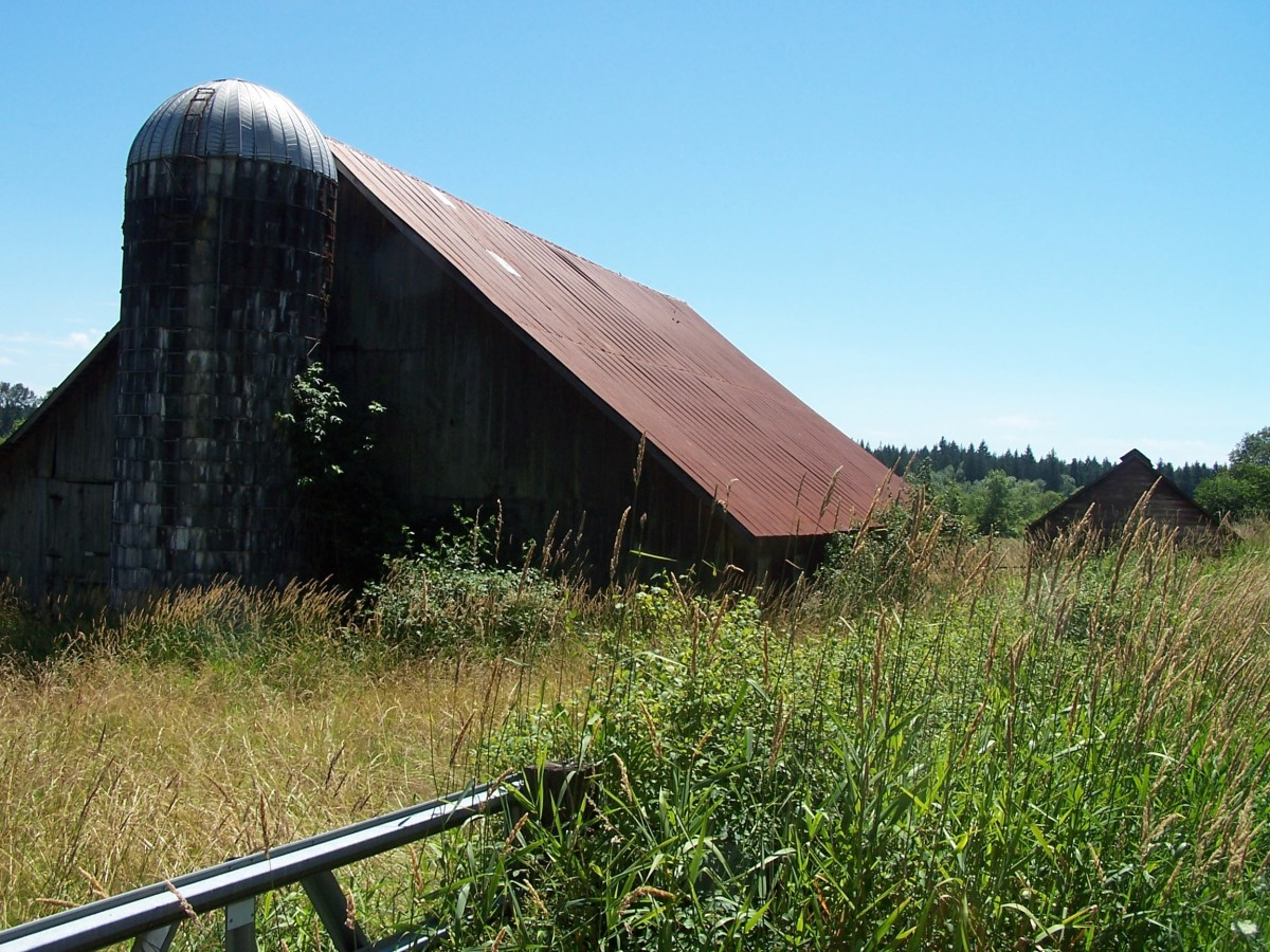 The Barn Scene