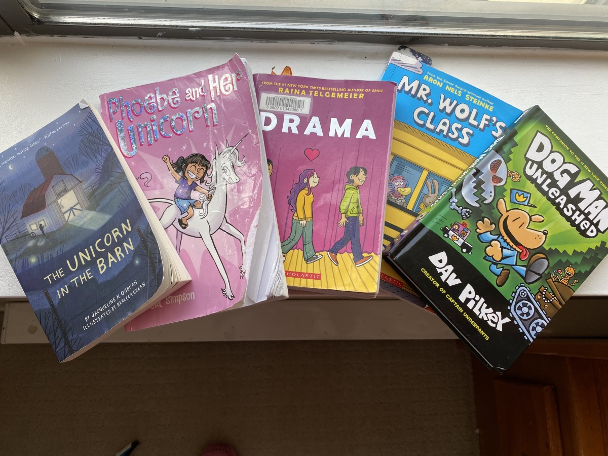 These are some of our favourite books!  Most are graphic novels.  Chose books that highlight your child's interests.  My daughter loves unicorns, so those are most popular for us.  Author Raina Telgemeier presents content for the pre-teen.