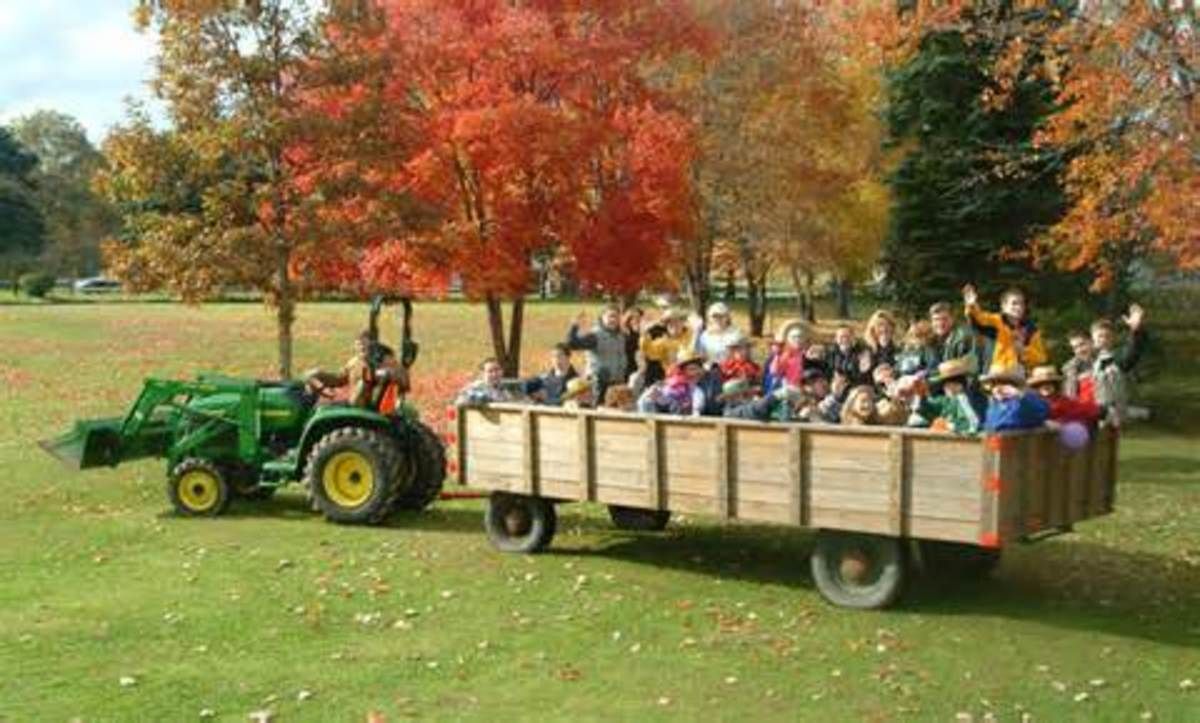 Adults as well as children can enjoy a hayride anytime.
