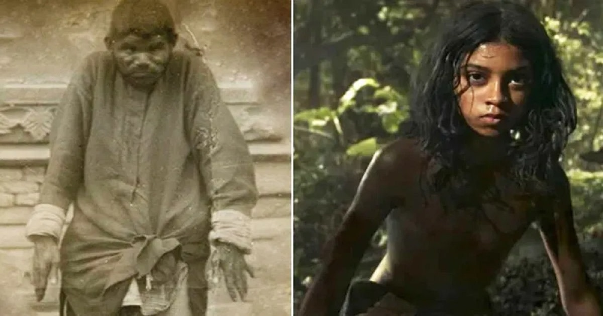Not many know that Kipling's Mowgli was based on the real-life story of Dina Sanichar, a feral boy who lived in the 19th century and was raised by wolves.
