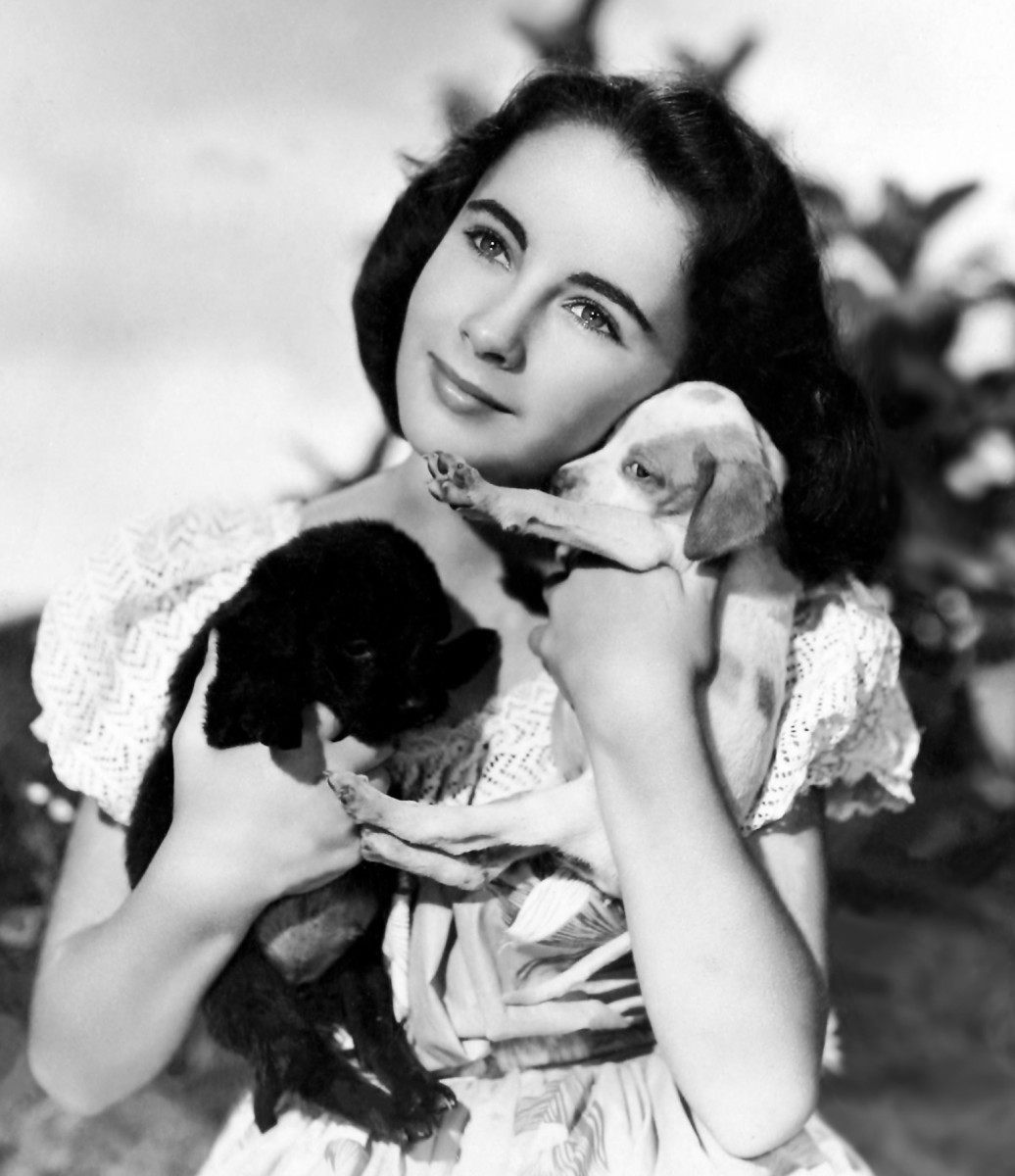Liz in National Velvet