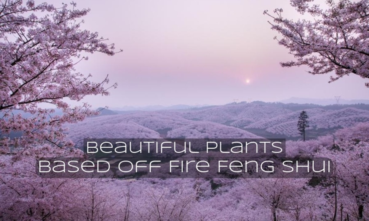 Cherry blossoms add beautiful color into landscapes. This can be a way to add fire feng shui during the spring season.