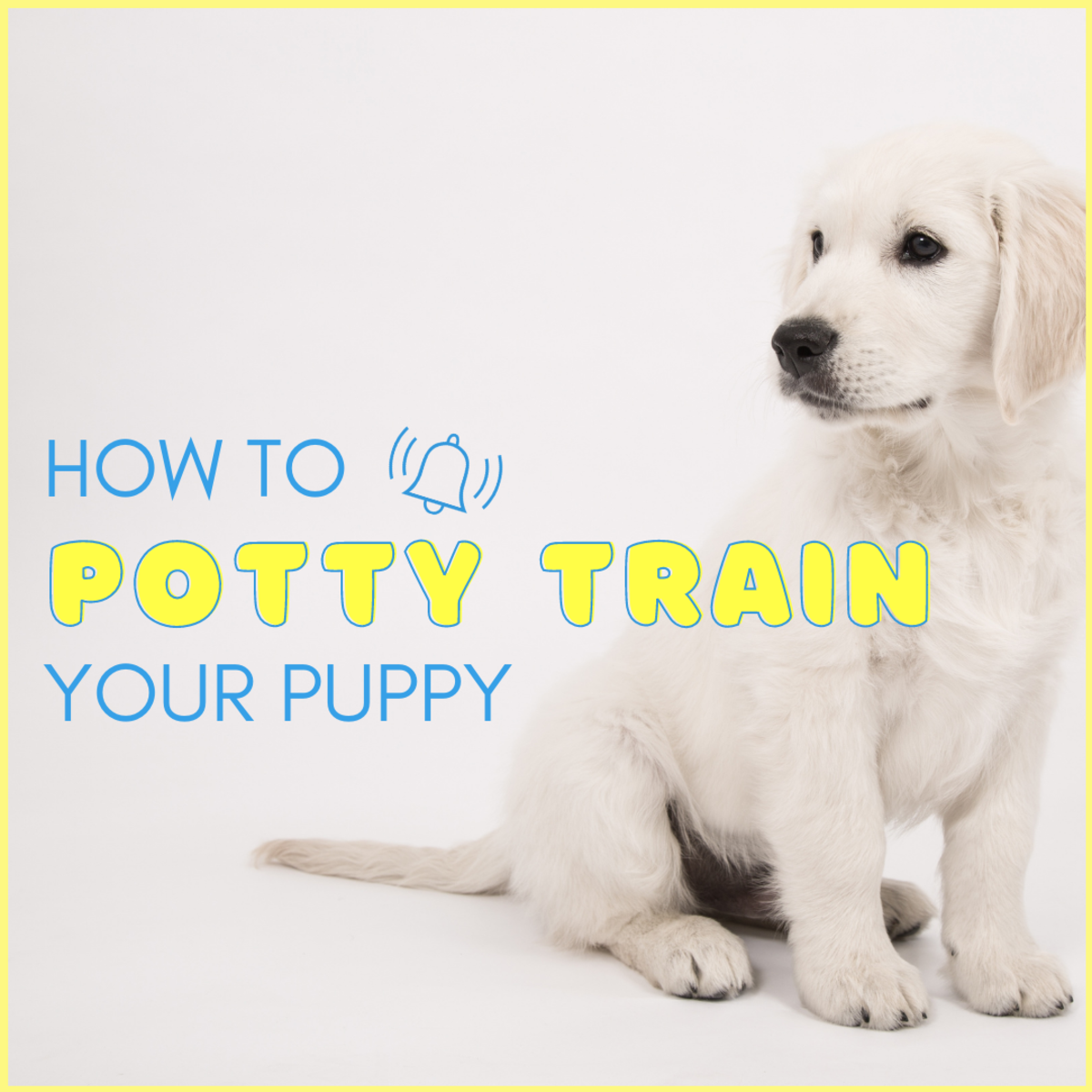 How to Train a Puppy to Potty and Poop Outside