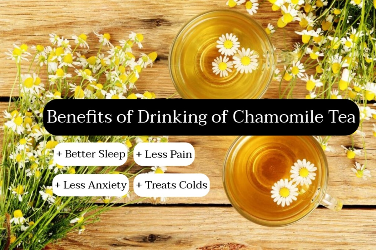 Chamomile tea is excellent to drink right before bed. Chamomile helps you sleep, it relaxes you, and it helps lower your anxieties.