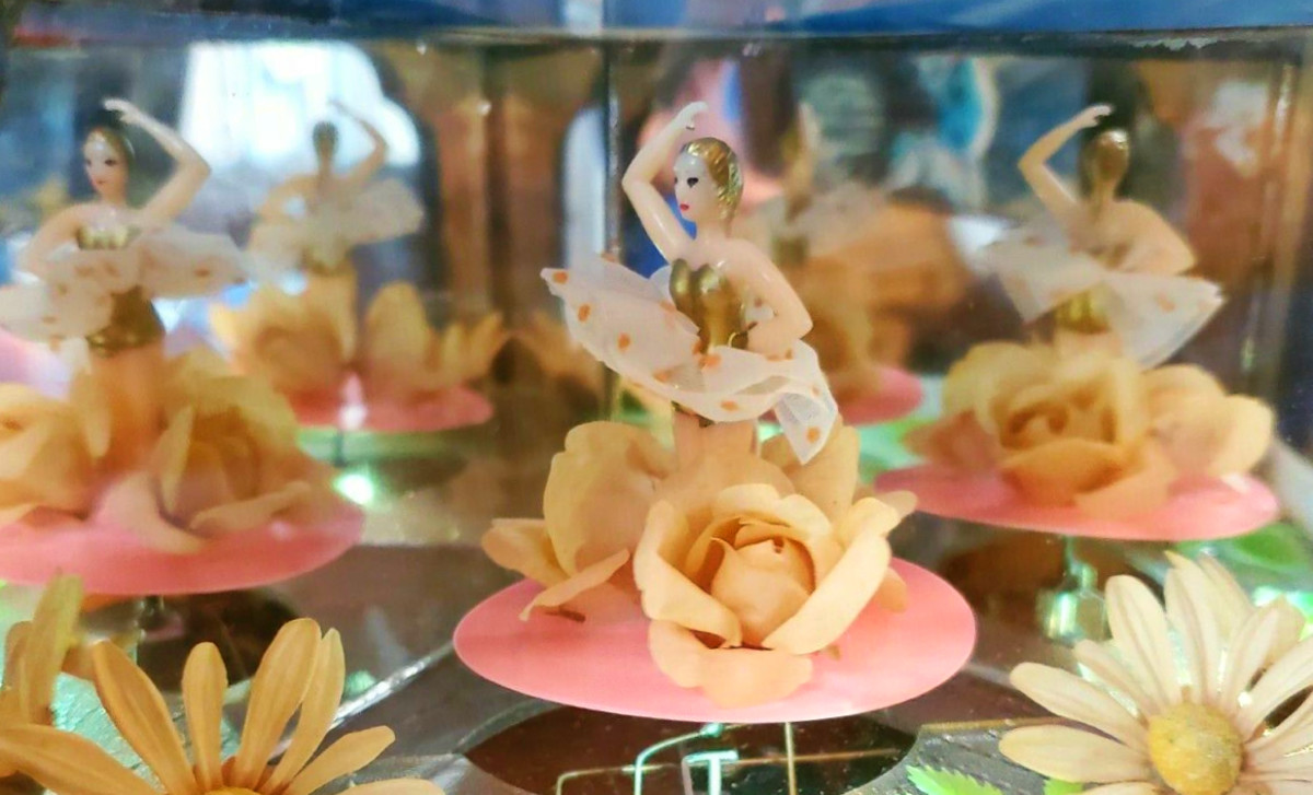 The mirrors and the flowers give the viewer the feeling of a magical world of ballerinas and a sweet private musical  orchestra.