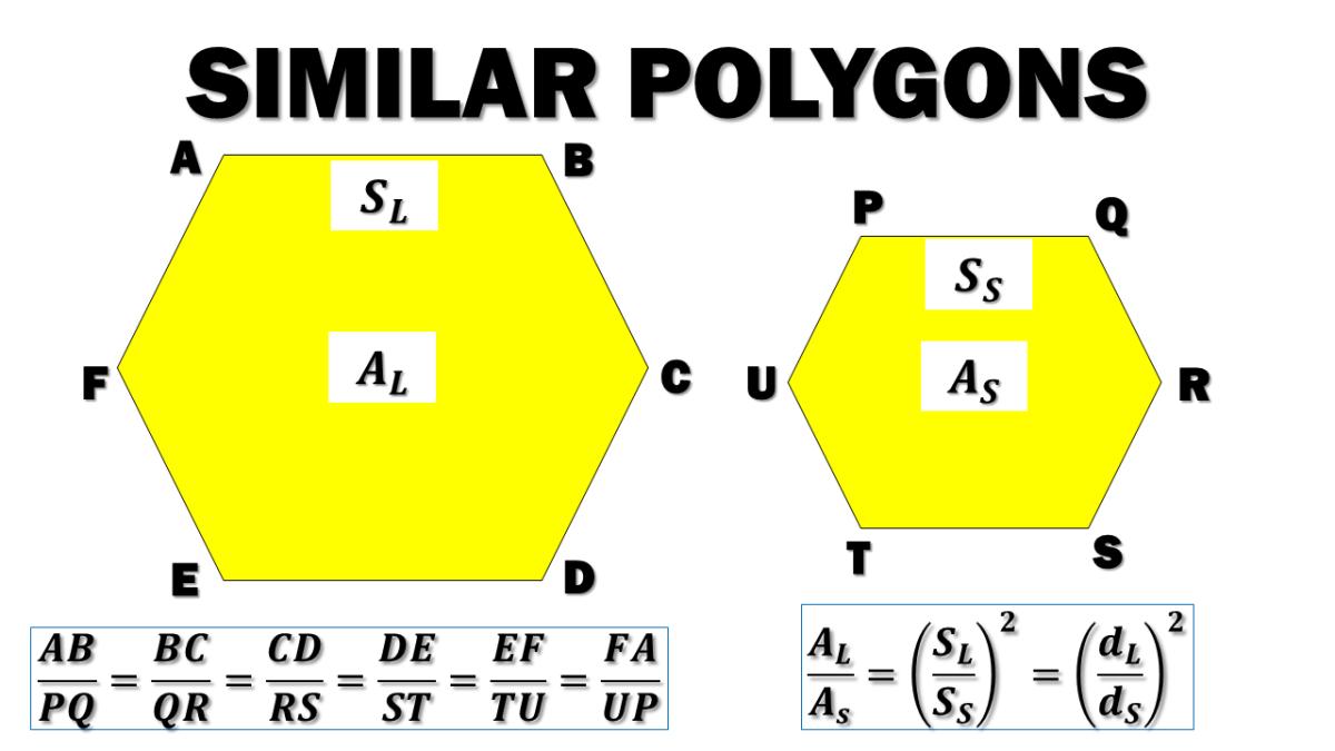 Similar Polygons