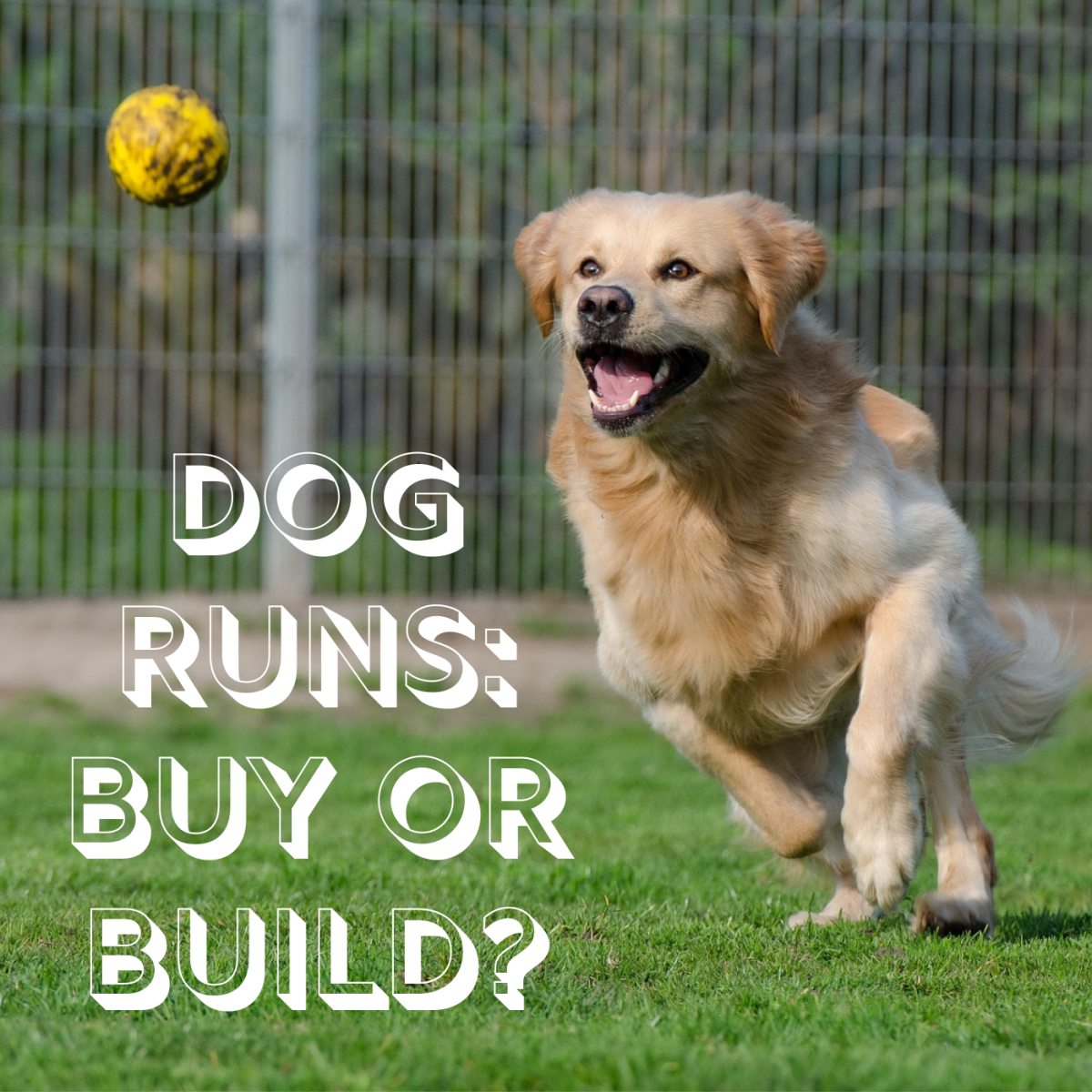 A fenced-in dog run or kennel gives your pooch a safe place to exercise outside. Learn about the pros and cons of buying a prefab run versus DIYing it.