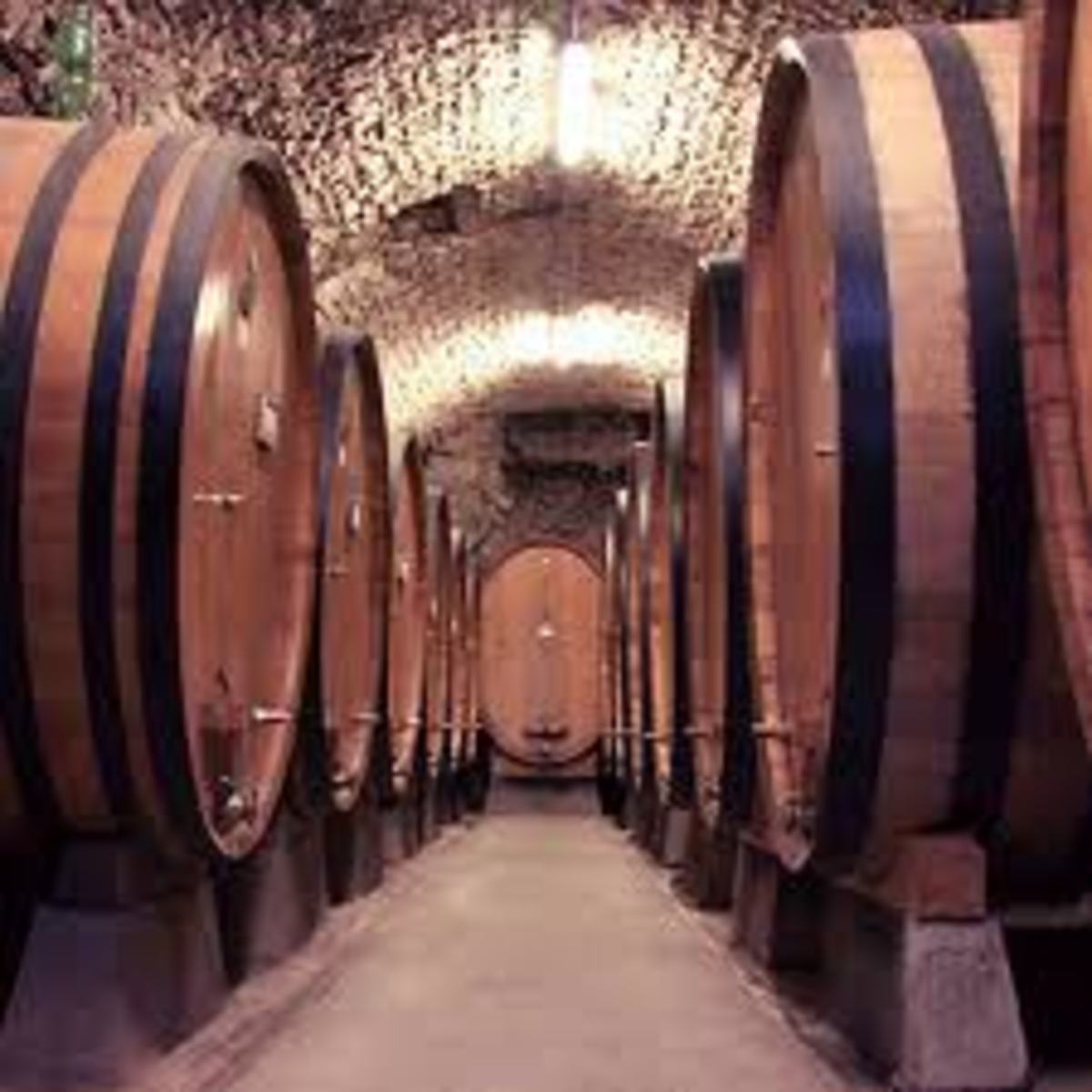 Typical wine cellar or cave with two rows of wine casks.