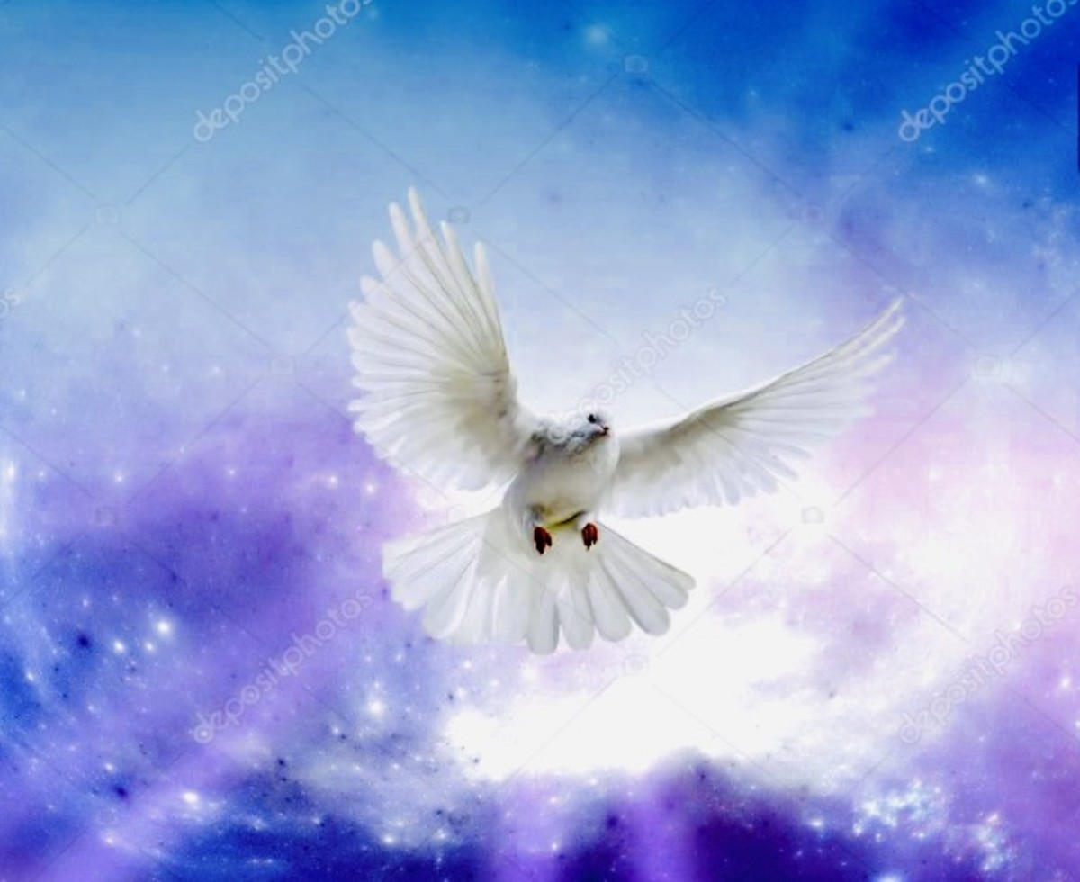 The Elusivity of Peace