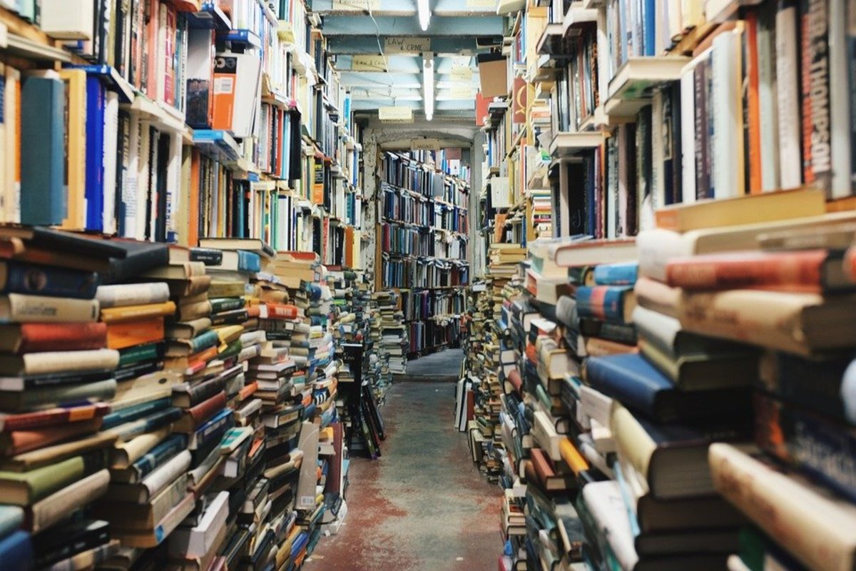 Top Six Reasons to Visit a Library