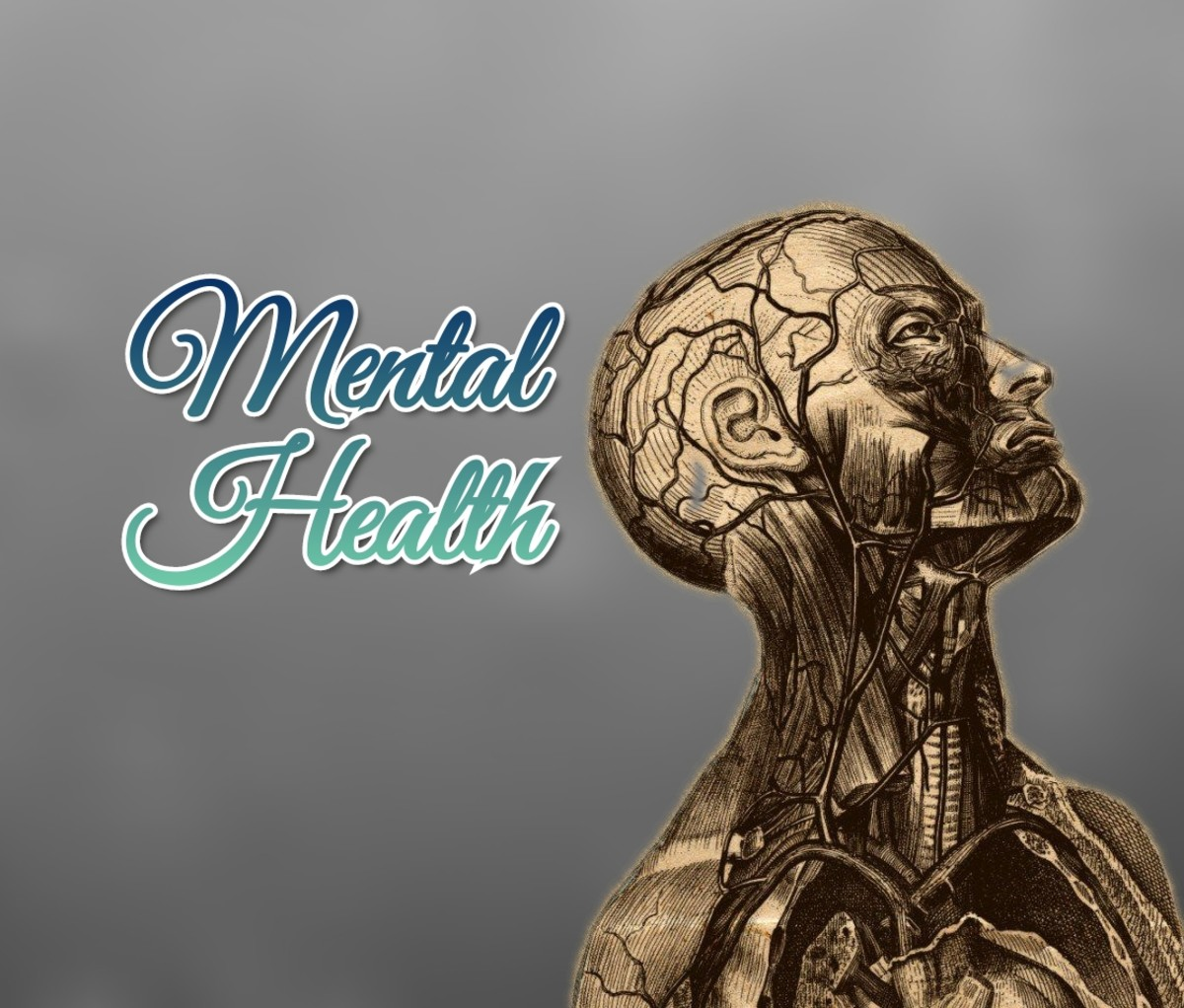 MENTAL HEALTH DEVELOPMENT