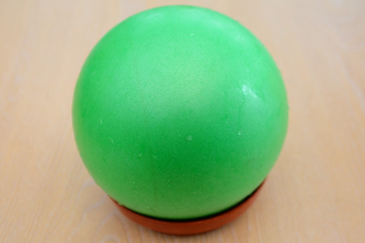 Blow up the 'Gertie' ball and place it inside the largest pot plant holder with the vent hole facing upwards.