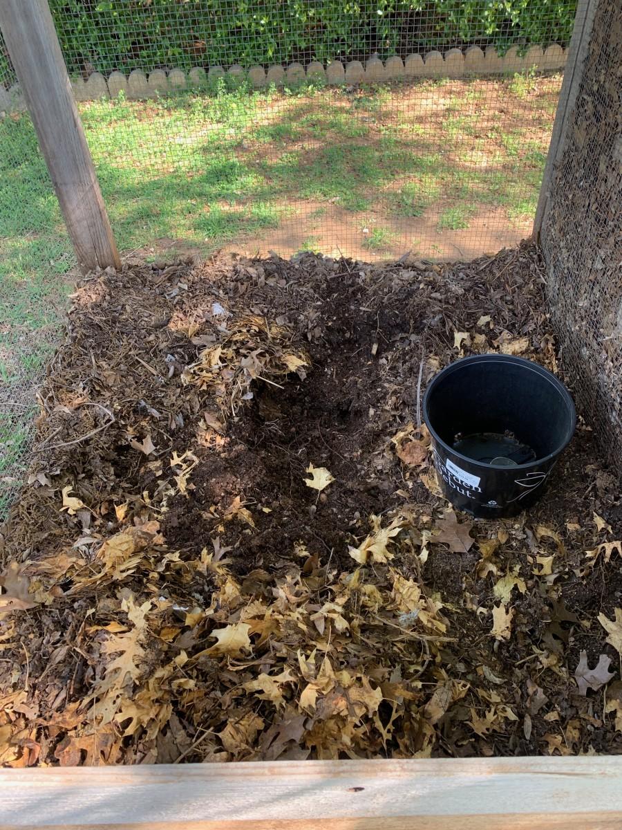 School garden compost bin