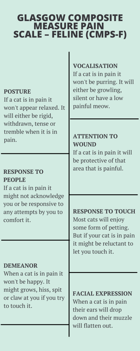 Glasgow Composite Measure Pain Scale - Feline is a tool used to assess the pain level a cat is feeling.