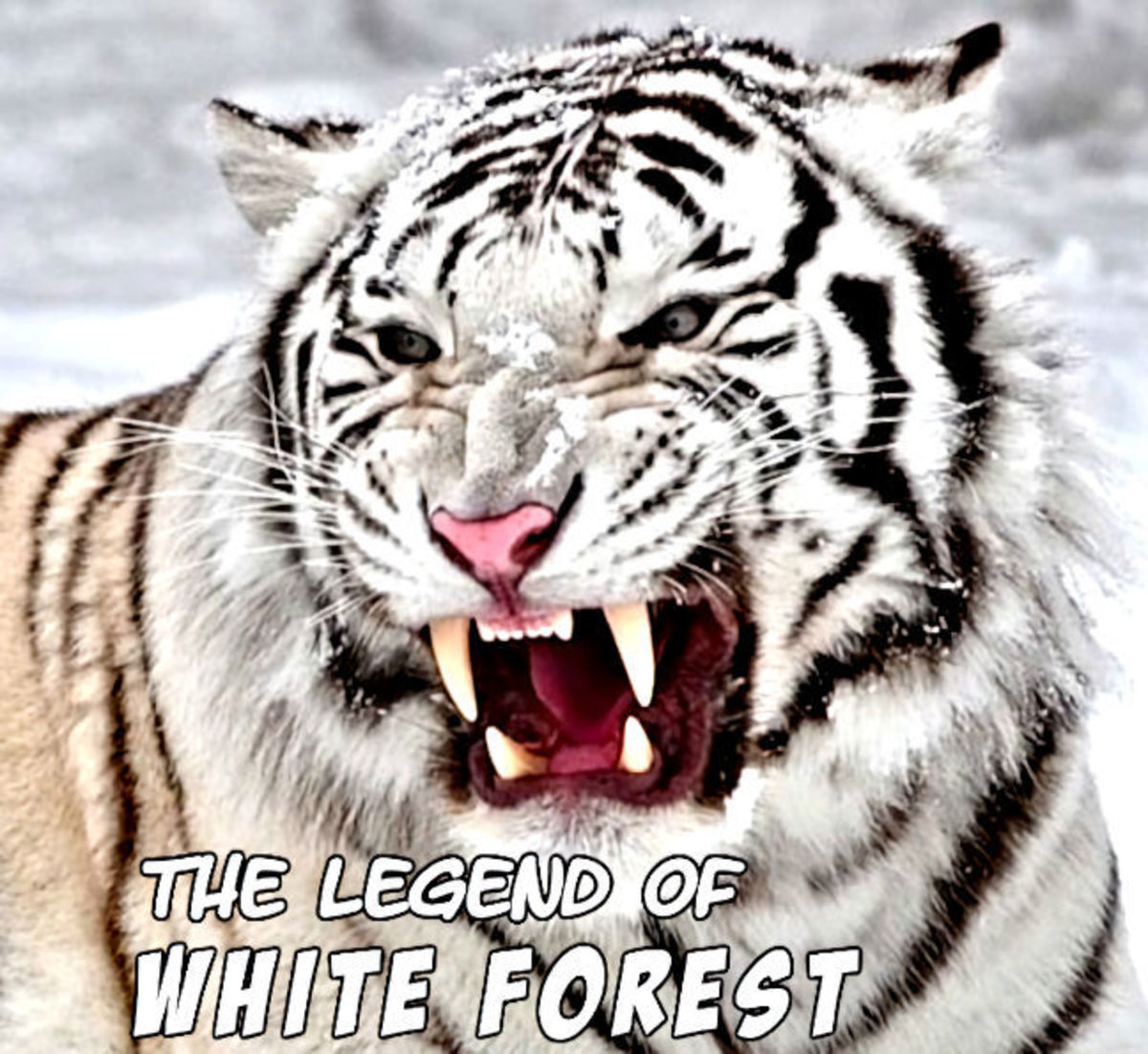 The Legend of White Forest 15