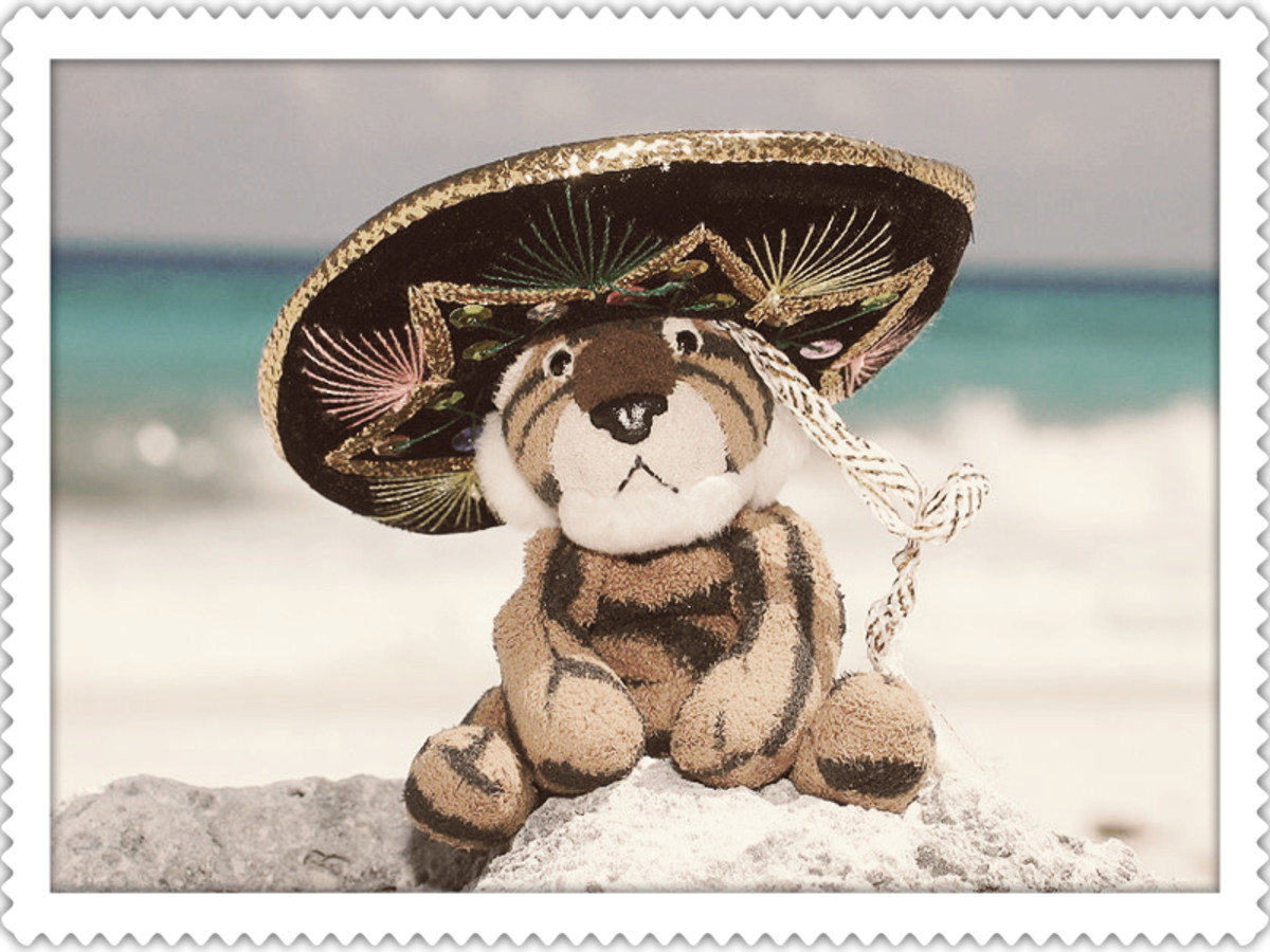 A stuffed tiger wearing a sombrero