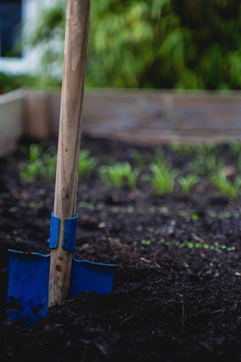 Design your nursery seedbeds based on your specific needs. Generally, however, seedbeds are 1.5 meters wide.