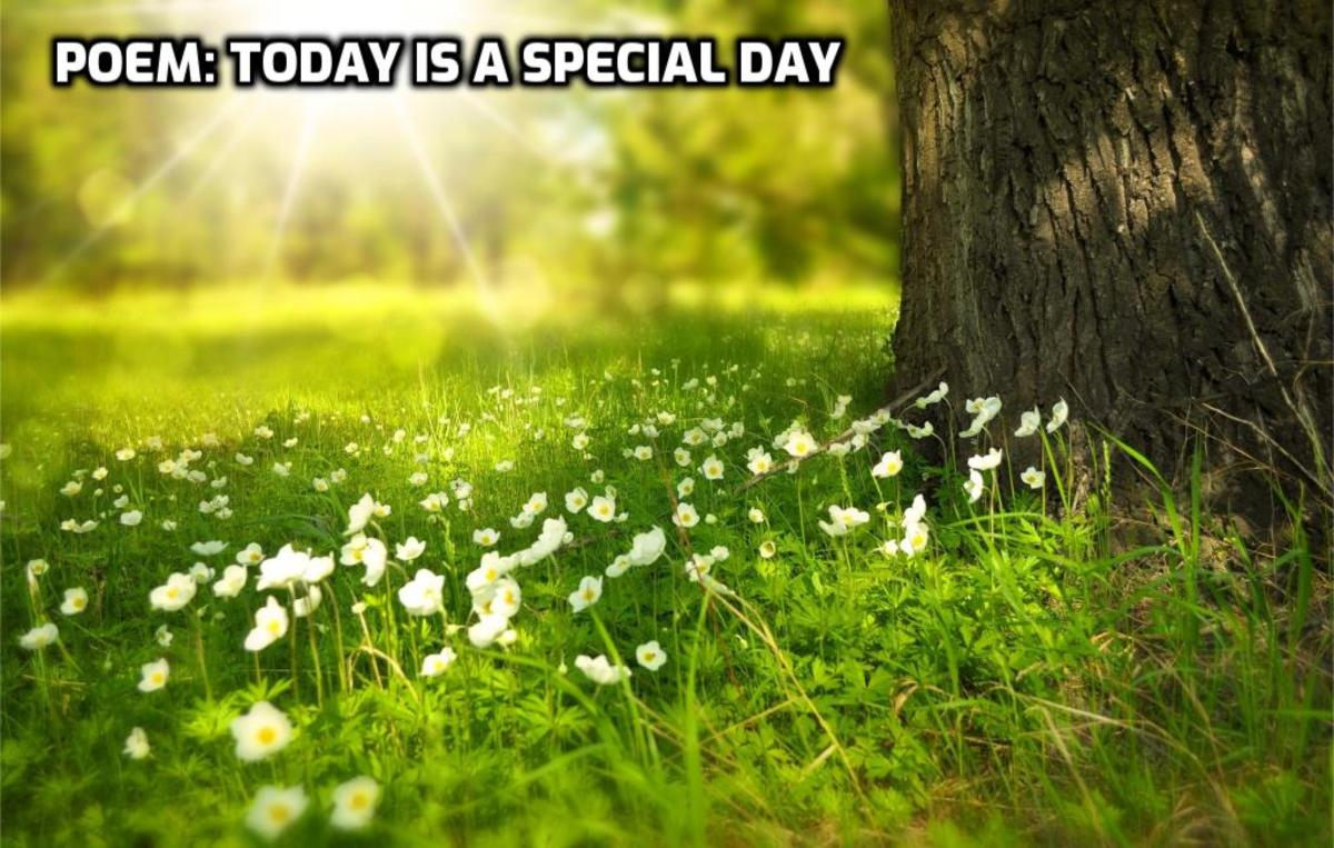 Poem: Today is a Special Day-Response to Word Prompt Today by Brenda Arledge