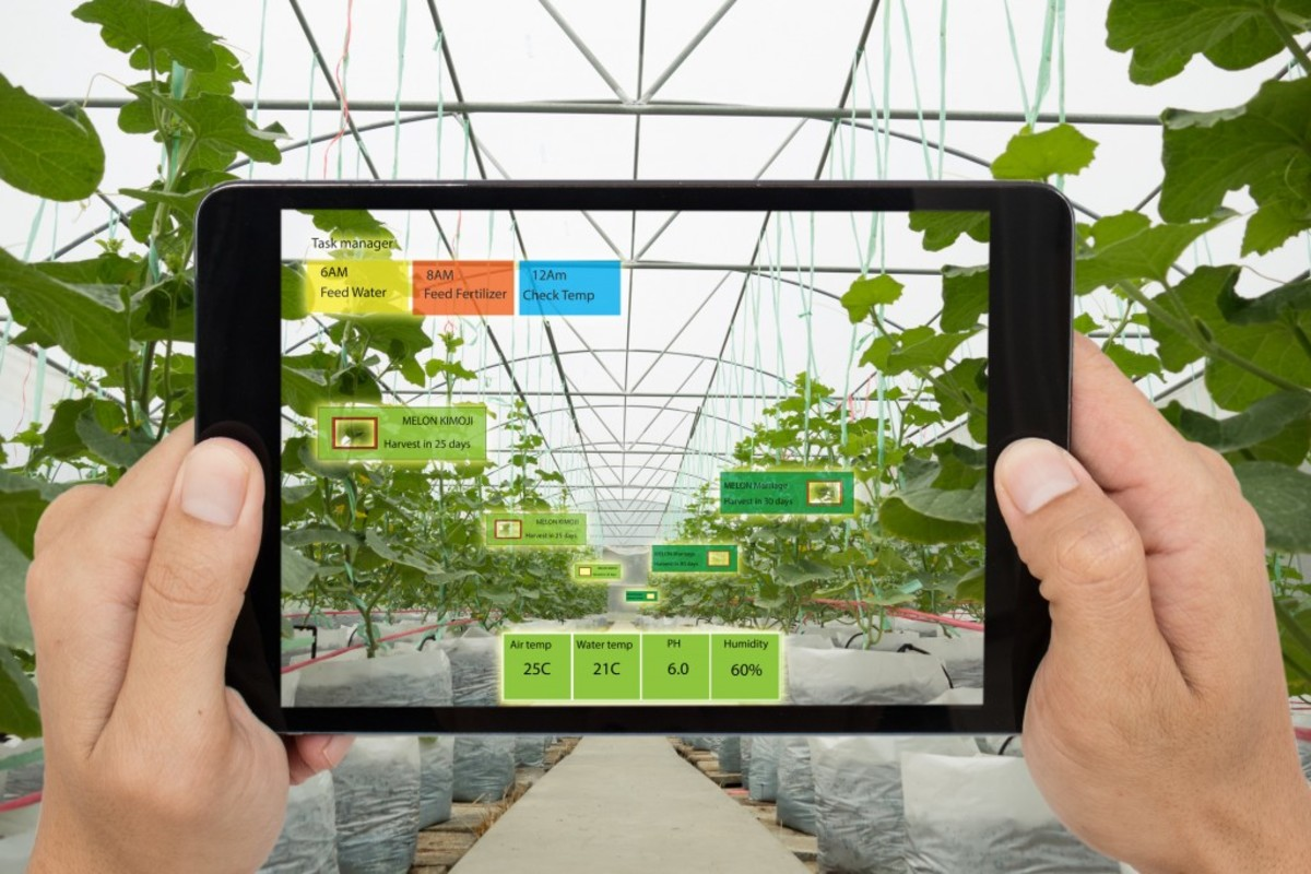 3-ways-augmented-reality-technology-can-revolutionise-gardening