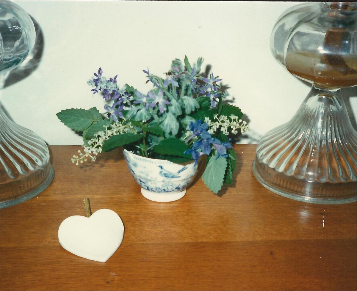 Borage flowers in a vintage teacup.