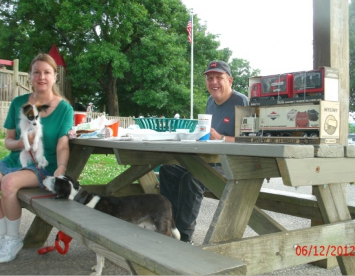Enjoying the picnic shelter