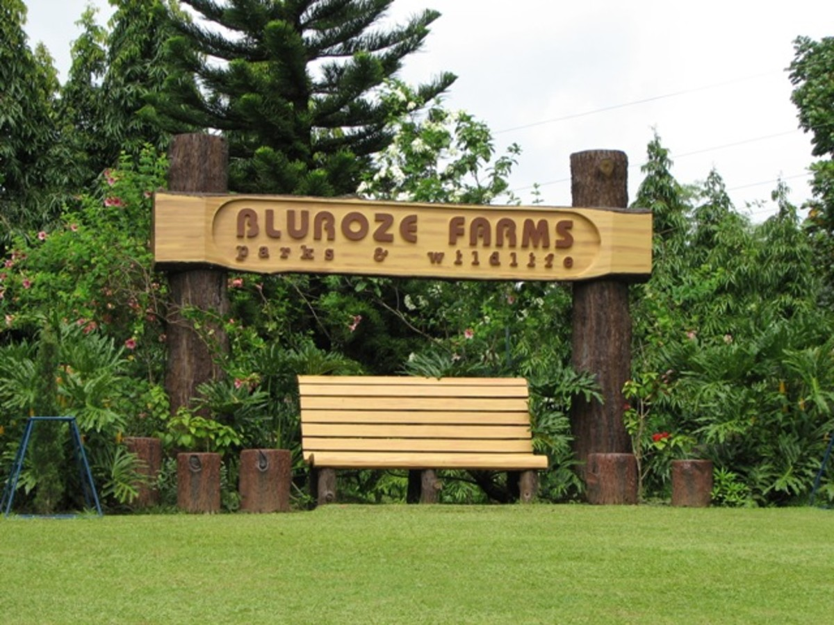 Trip to the Philippines: Bluroze Farms in Batangas
