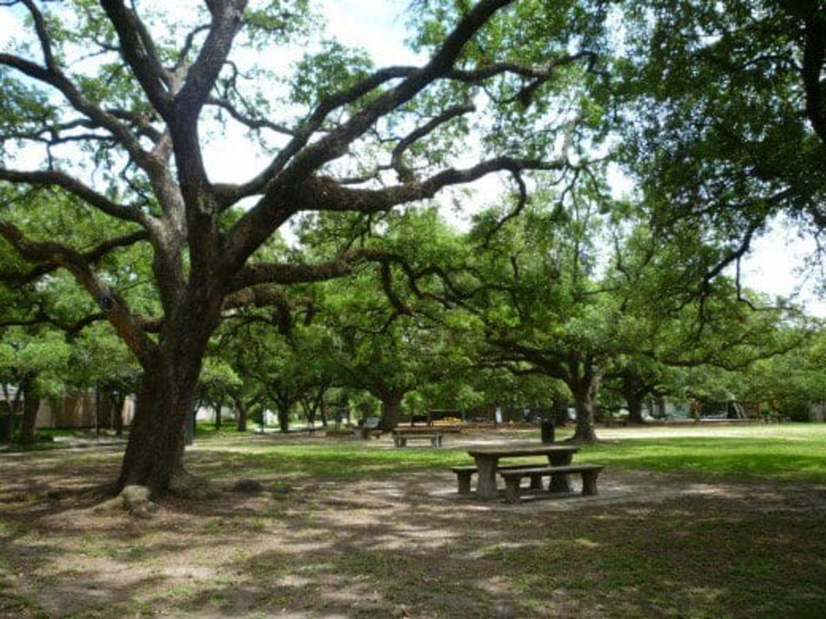 Photos of Fleming Park in Houston, Texas