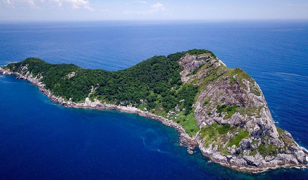 Snake Island, the Brazilian Island Where Humans Are Forbidden