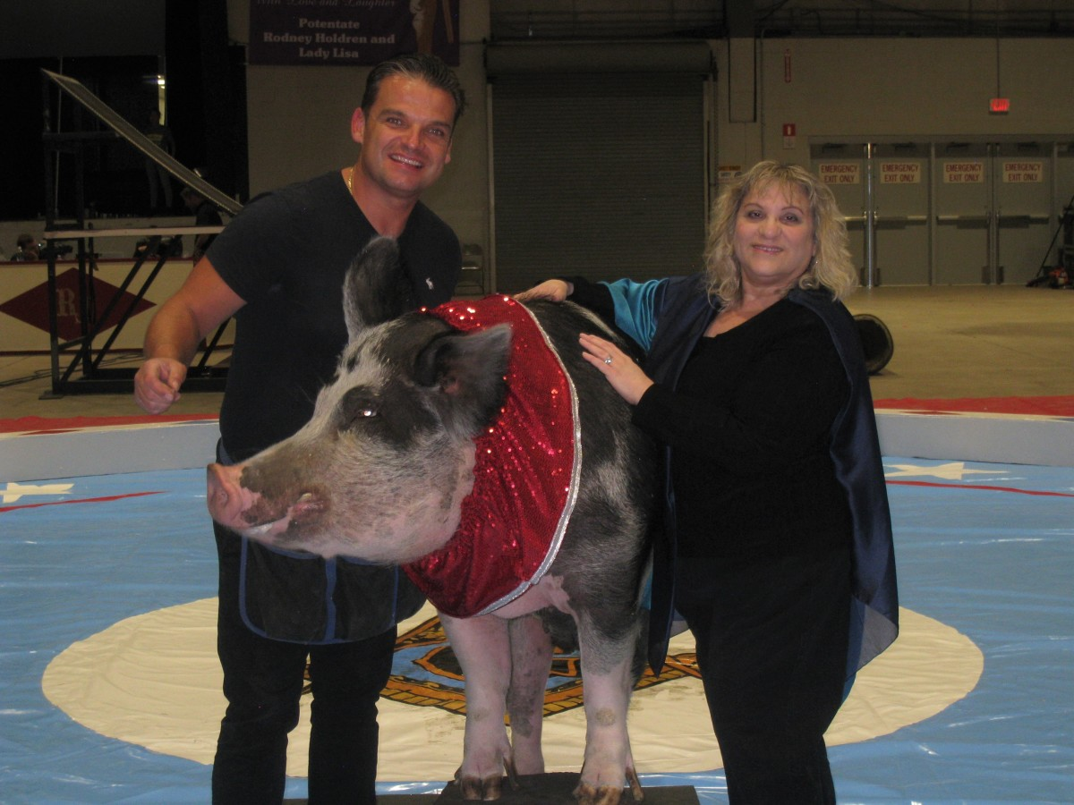 Hans Klose, Shelton the Pig, and Teri