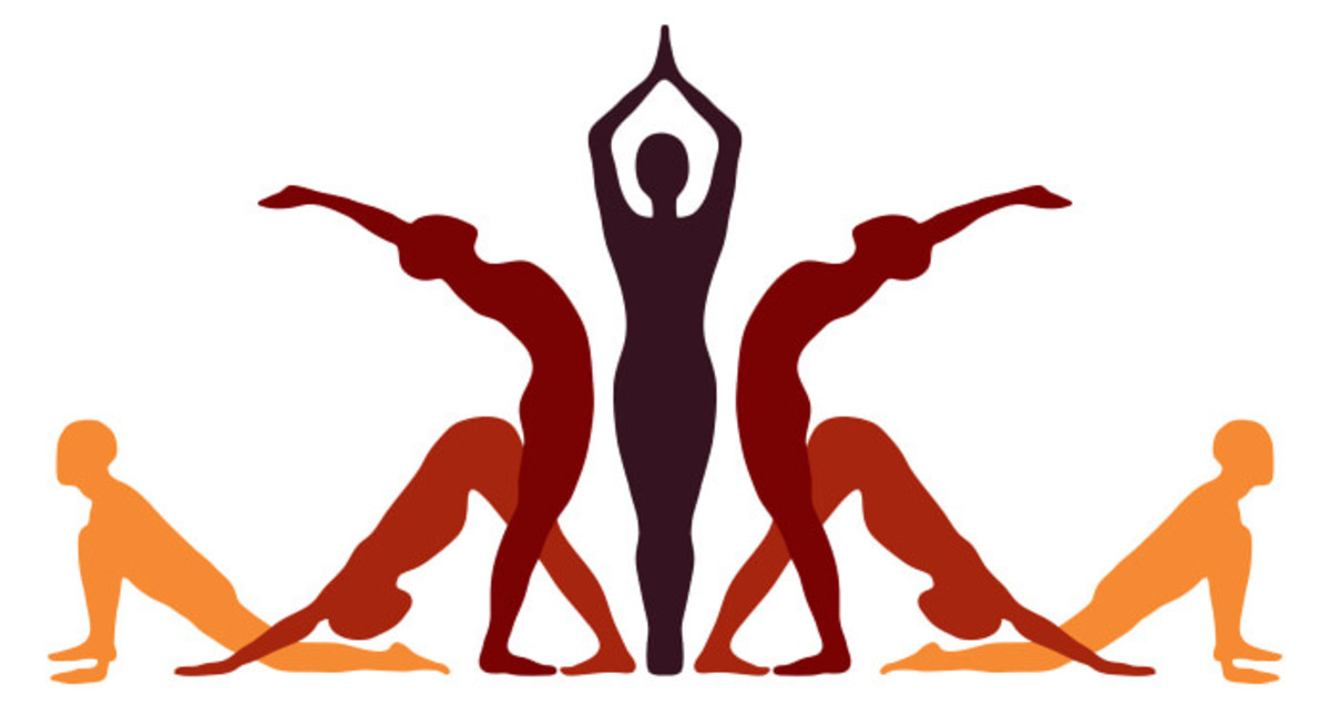Zumba and Yoga workouts are simple routines to build your physique, provide strong leg muscles, and cardio dance fitness.