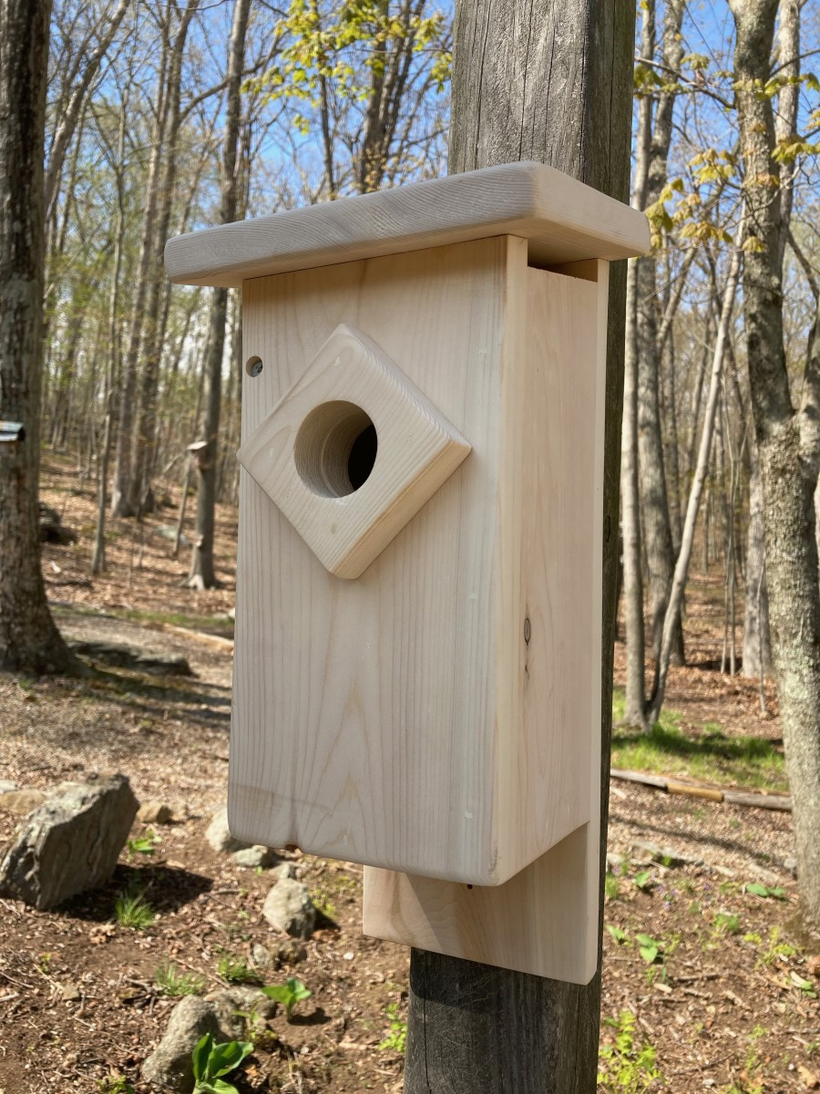 This nest box is specially designed to meet the needs of Eastern Bluebirds