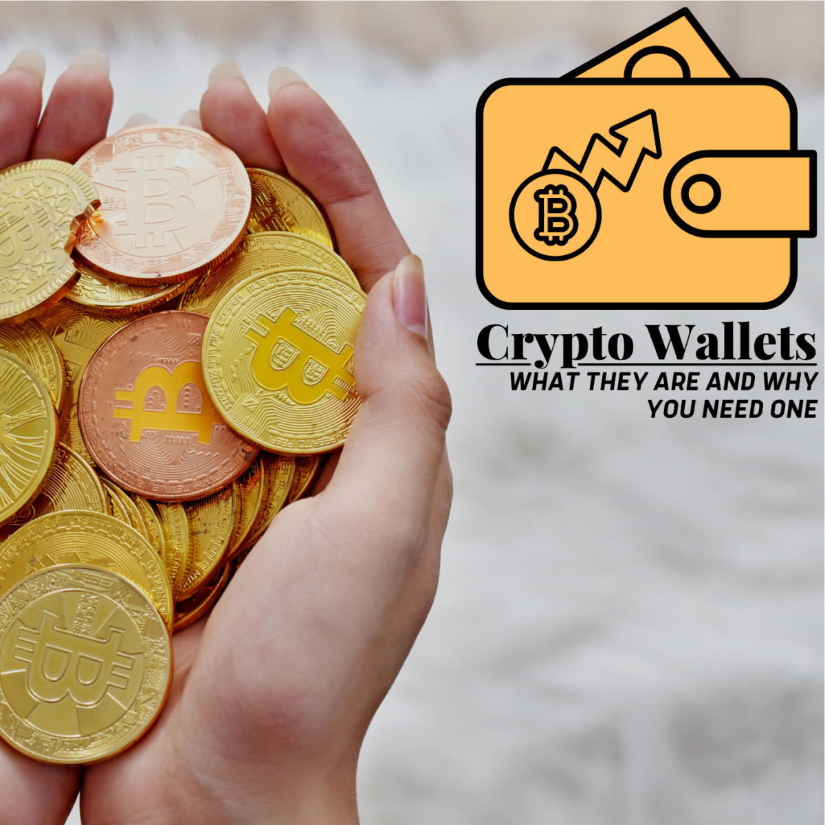 Keeping your crypto in a wallet is safer and more secure than holding it through an exchange platform like Robinhood or Coinbase.